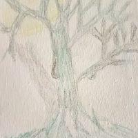 WP_20170331_13_57_04_Pro